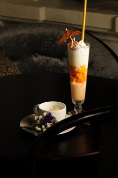 Mango-parfait-Our food is exactly what our  menu providesporfolio-egret-grass-food-stylist