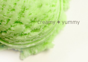 coconut-green-tea-ice-cream-Mua-kem-porfolio-egret-grass-food-stylist