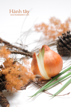 hanh-tay-onion-Auntumn-mood-porfolio-egret-grass-food-stylist