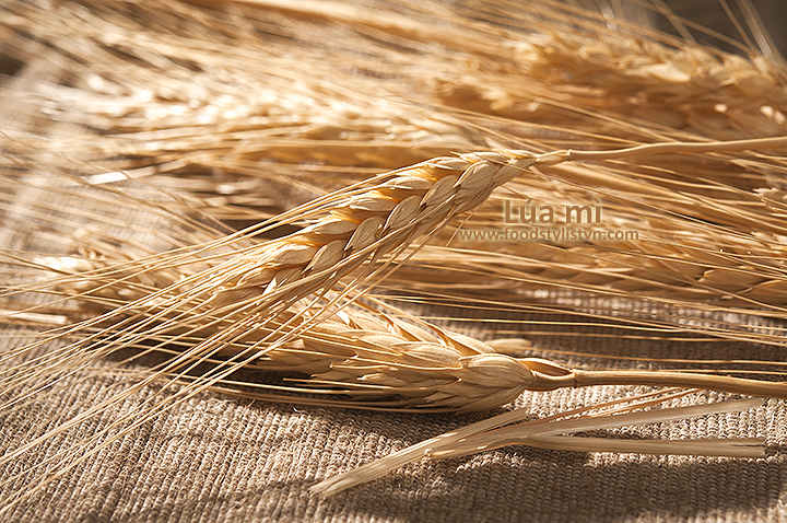 Lúa mì - Food styling: Egret Grass - Photograph by: Rong Vang